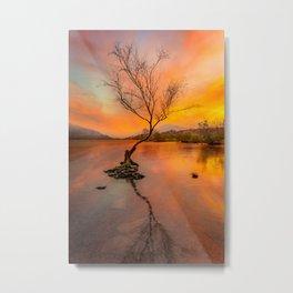 Llanberis Lake Lone Tree Snowdonia Metal Print