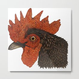 Rooster color pencil drawing Metal Print
