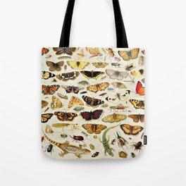 "Jan van Kessel the Elder ""An Extensive Study of Butterflies, Insects and Seashells"" Tote Bag"