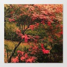 Autumn in the Garden 2 Canvas Print