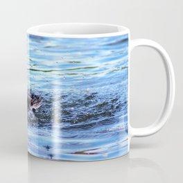 Duck Splash Coffee Mug