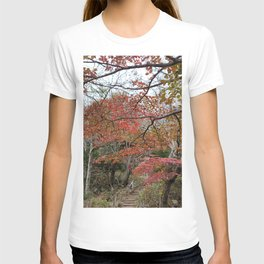 Halla-Mountain autumn leaves , Jeju Island, Korea. T-shirt