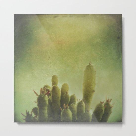 Cactus in my mind Metal Print