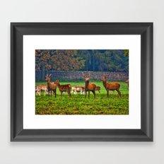 The Young Bucks Framed Art Print
