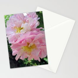 Celestial Antique Rose Stationery Cards