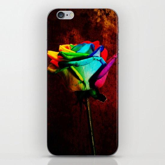 Rainbow rose 2 iPhone & iPod Skin