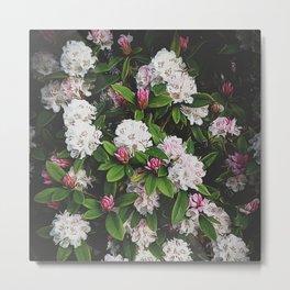 Rhododendron Flower Metal Print