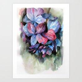 Hydrangea III Art Print
