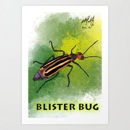 Blister bug Art Print