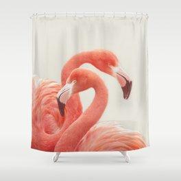 FLAMINGOS FLAMINGOS Shower Curtain