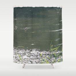 ducks iii Shower Curtain