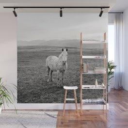 Appaloosa Horse | Western Art Wall Mural