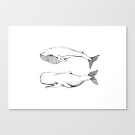 Two Whales. Canvas Print