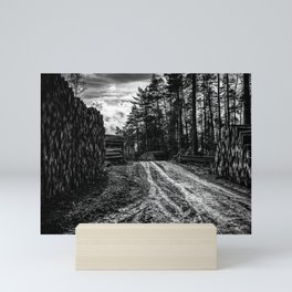 Poltery Site (Wood Storage Area) After Storm Victoria Möhne Forest 5 bw Mini Art Print