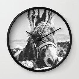 DONKEY / Spain Wall Clock