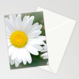 Daisies flowers in painting style 1 Stationery Cards