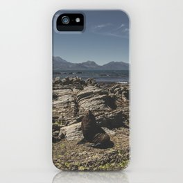 Fur Seal iPhone Case