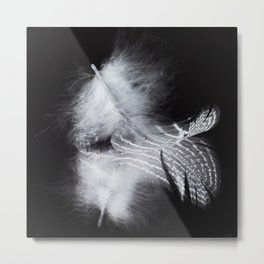 Macro photograph of a feather sitting on a mirror showing the complete reflection. Metal Print