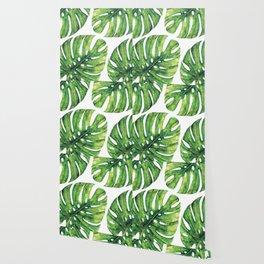monstera leaves Wallpaper