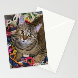 Kitten In Colorful Looms Stationery Cards