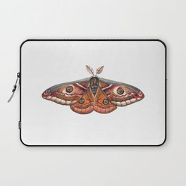 Small Emperor Moth (Saturnia pavonia) Laptop Sleeve