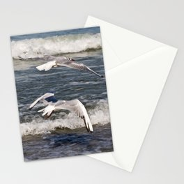 PERFECT HARMONY - Seagulls - Island Ruegen  Stationery Cards