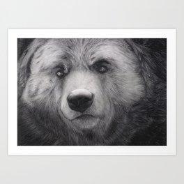 Bear Charcoal Art Print