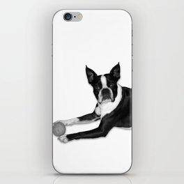 Fetch Boston Terrier B/W iPhone Skin