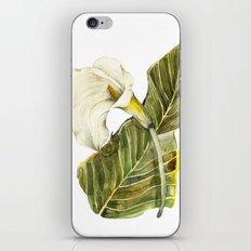 White Calla Lily iPhone & iPod Skin