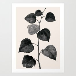 PLANT3a Art Print