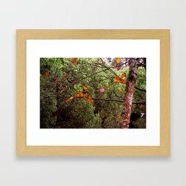 the last leaves Framed Art Print