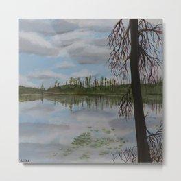 Halfway Lake, Site 93 Metal Print