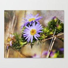 Forest Purples Canvas Print