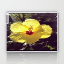 Summertime Flower Laptop & iPad Skin