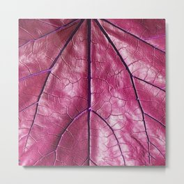 BURGUNDY PURPLE  ART LEATHERY TROPICAL LEAF Metal Print