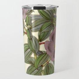 Osbeckia aspera, Melastomataceae Travel Mug