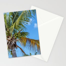 Coconuts Fresh From The Source Stationery Cards