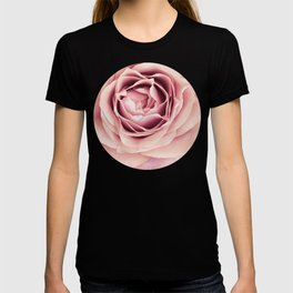 My Heart is Safe with You, My Friend - pale pink rose macro T-shirt
