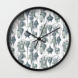 Ernst Haeckel Peridinea Plankton Wall Clock