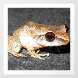 Watercolor Coqui Frog Art Print
