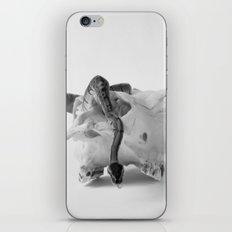 Gizmo iPhone & iPod Skin