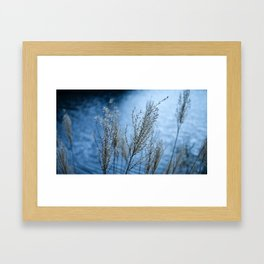 Lake Japan Framed Art Print