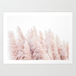 Pink Pampas Grass Art Print
