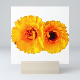 Chrysanthemum Mini Art Print