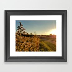 Autumn Fields 2 Framed Art Print