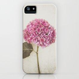 Beautiful Pink Hydrangea iPhone Case
