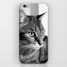 cat look iPhone Skin