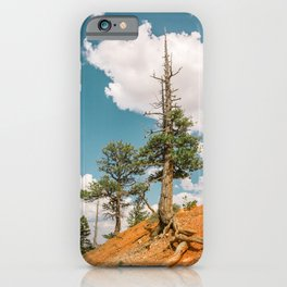 Queens Garden Trail Landscape in Bryce Canyon iPhone Case