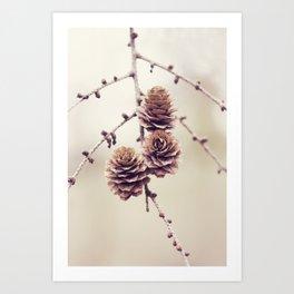 Woodland Pinecones Art Print