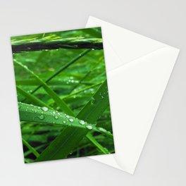 Montana Green Stationery Cards